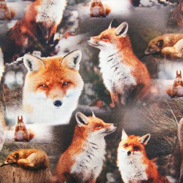 Digitaler Fotoprint Trikot Füchse