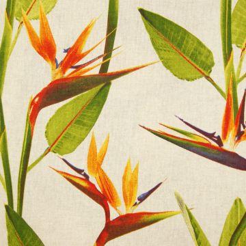 Decoratiestof papegaai bloemen